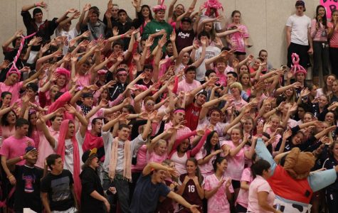 Dig Pink Volleyball Fans 2011