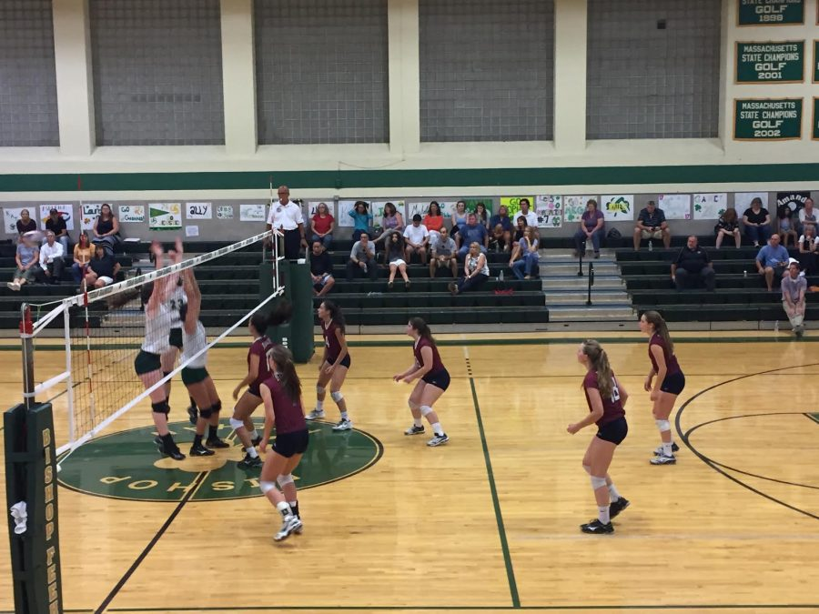 WHS Girls Volleyball Look to Win Another League Title