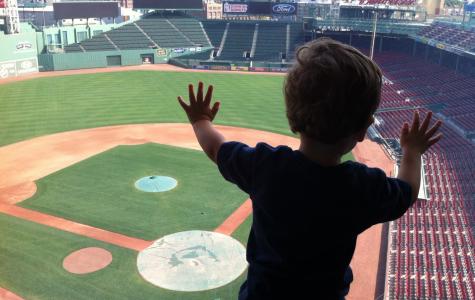 Steps for Being a Boston Sports Fan