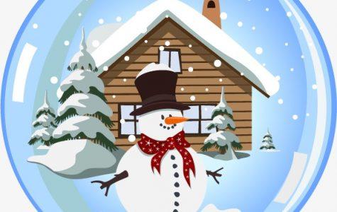 Dancing in a Winter Wonderland: WHS Winter Semi-Formal