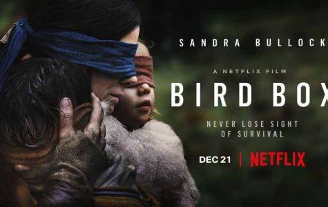 Bird Box: Worth A Watch