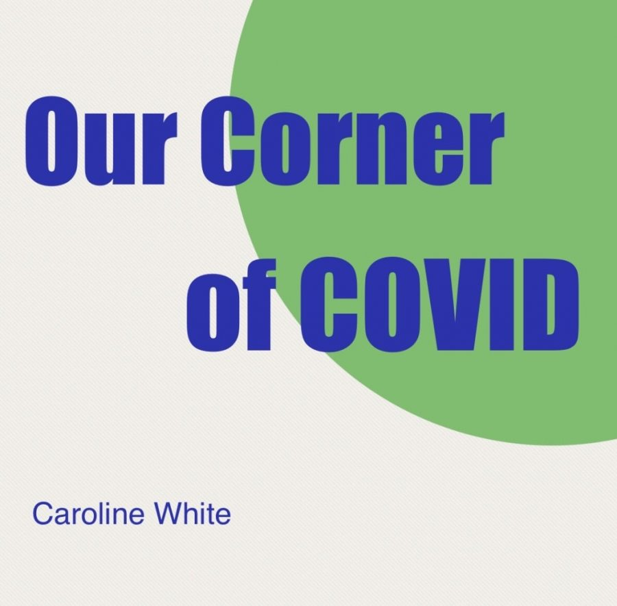 Our Corner of COVID: WPI Director of Recruitment Partnerships Julie Chapman Talks COVID and College Admissions